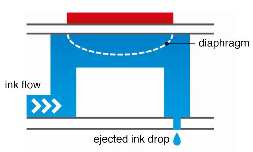 Hybrid Digital Flexo - Colordyne 3600 Series AQ & UV Retrofit - All